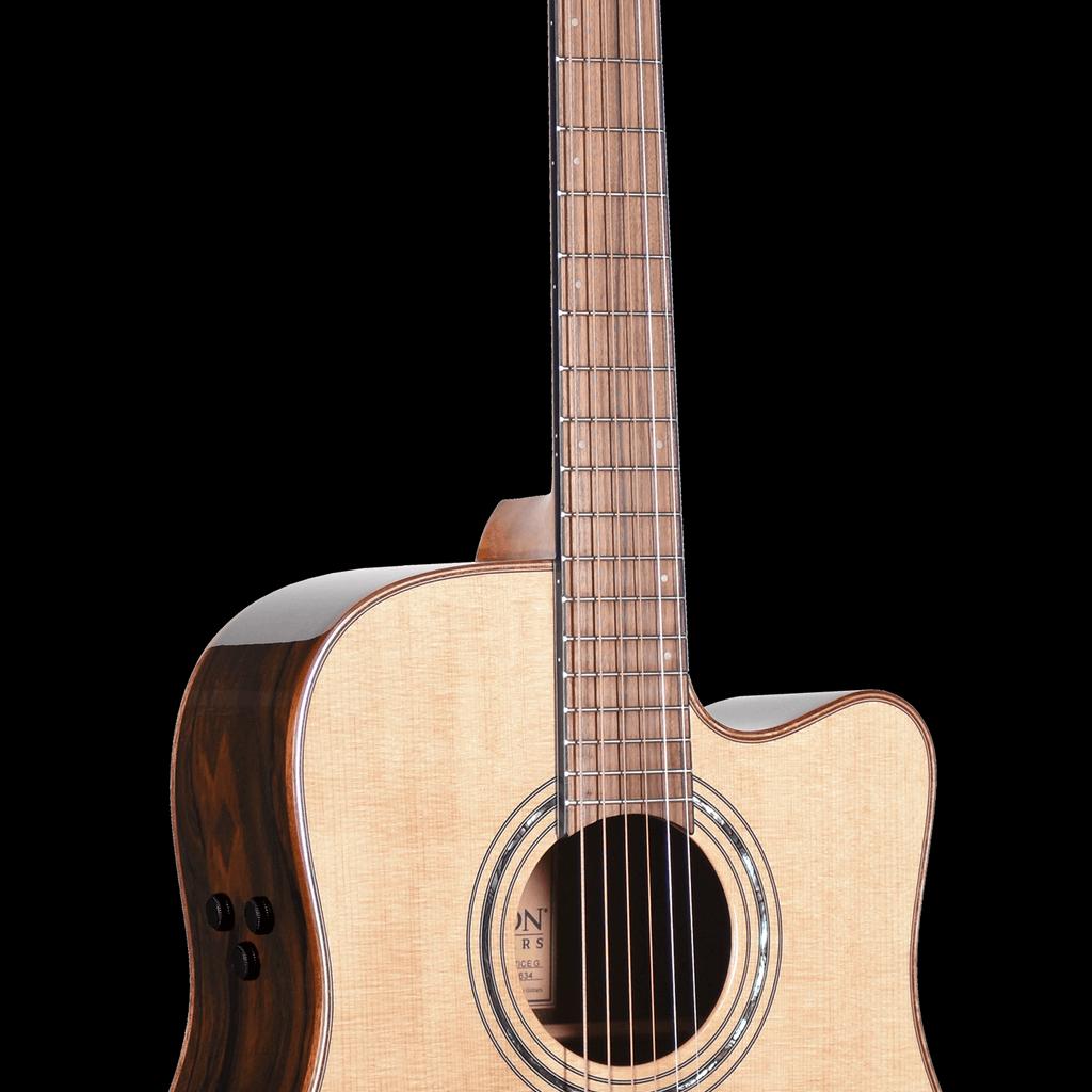 Teton Guitar Acoustic Guitar