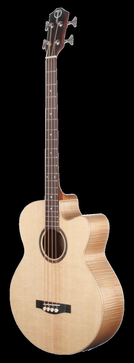 Teton Acoustic Bass