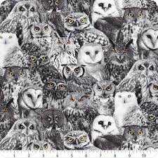 Packed Owls