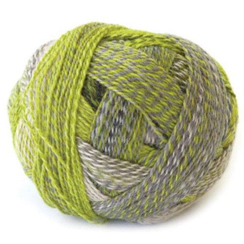 Schoppel Zauberball Starke 6 Yarn - Color #2204
