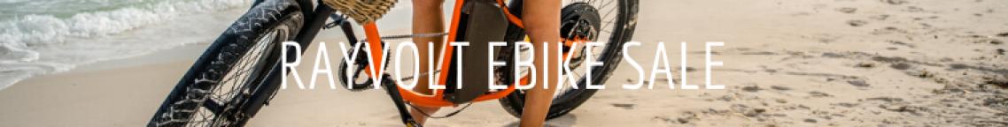 Rayvolt electric bike for sal edestin fl