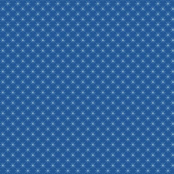 Desert Stars in Blue