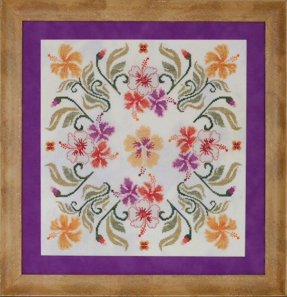 Glendon Place - Malvaceae (Hibiscus Mandala)