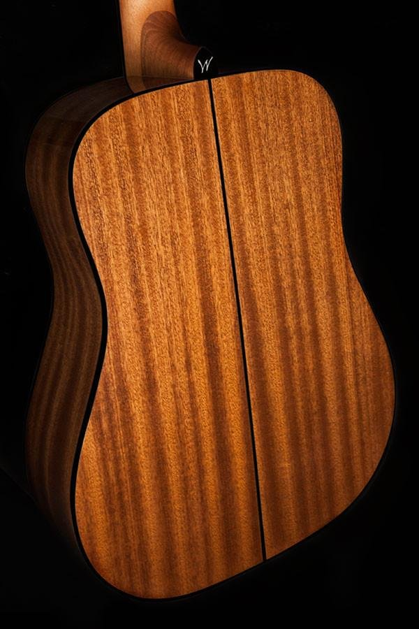 2032f3b497 Washburn Apprentice Dreadnought Acoustic - Hardshell Case Included