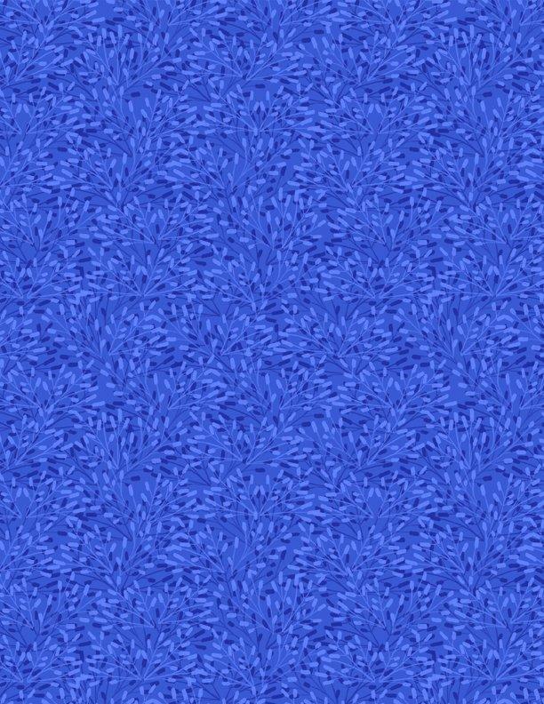 Whimsey - Med. Blue
