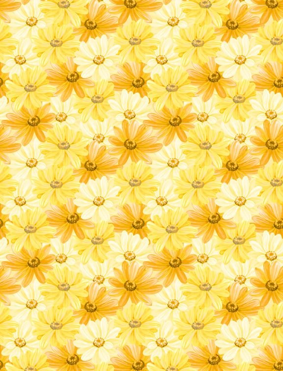 Madison - Packed Daisies - Yellow