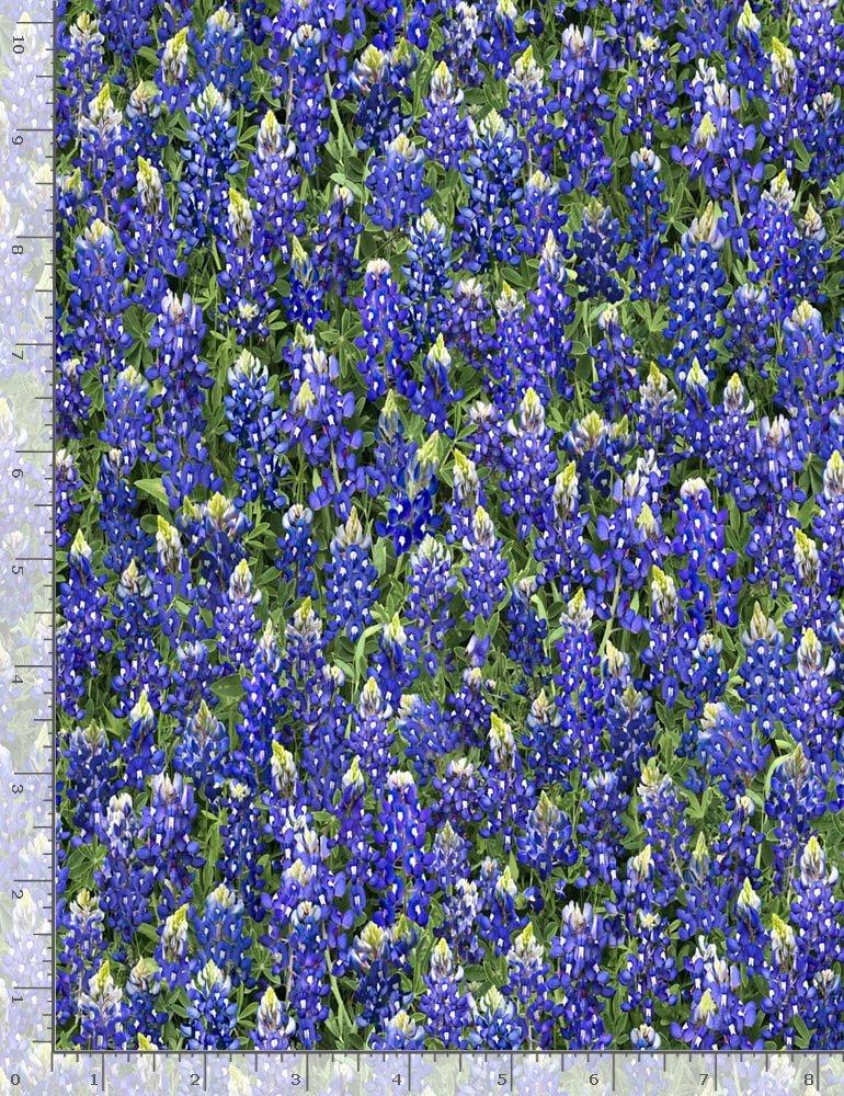 Flower Farm - Packed Bluebonnets