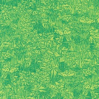 Friedlander Lawn