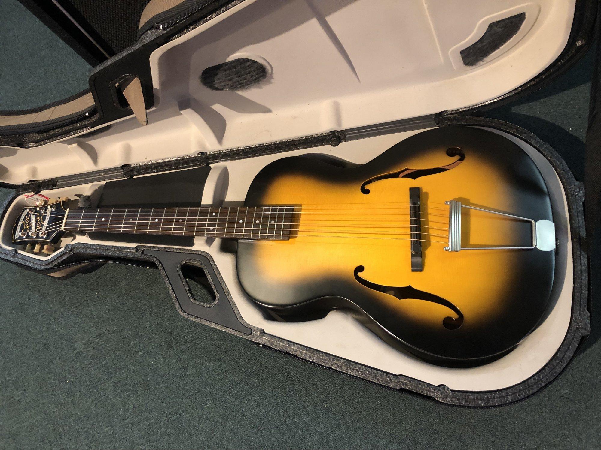 Tric Guitar Case
