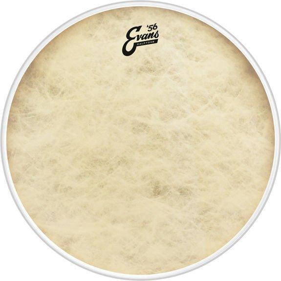 Evans '56 Calftone Drumhead