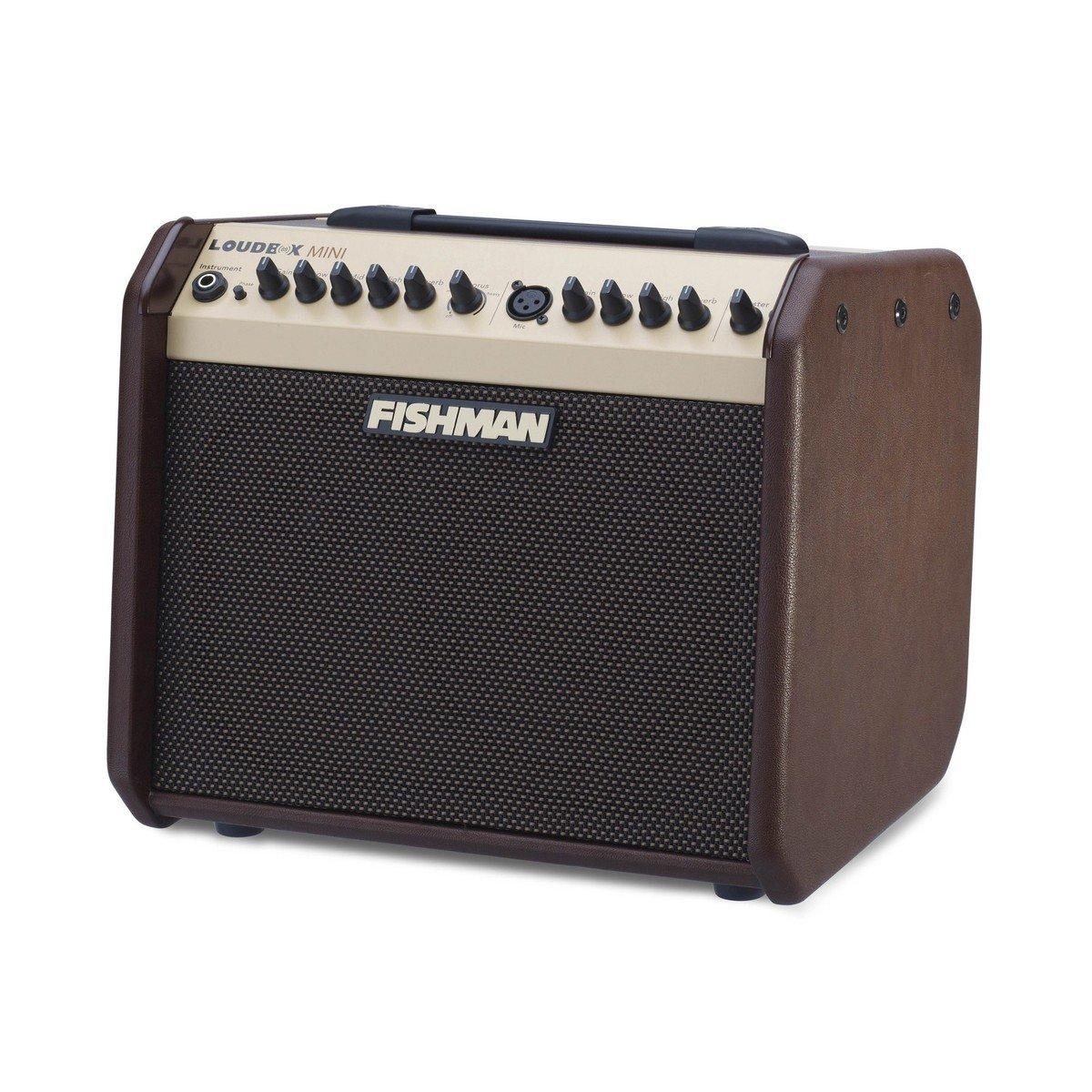Loudbox Mini Acoustic Amplifier