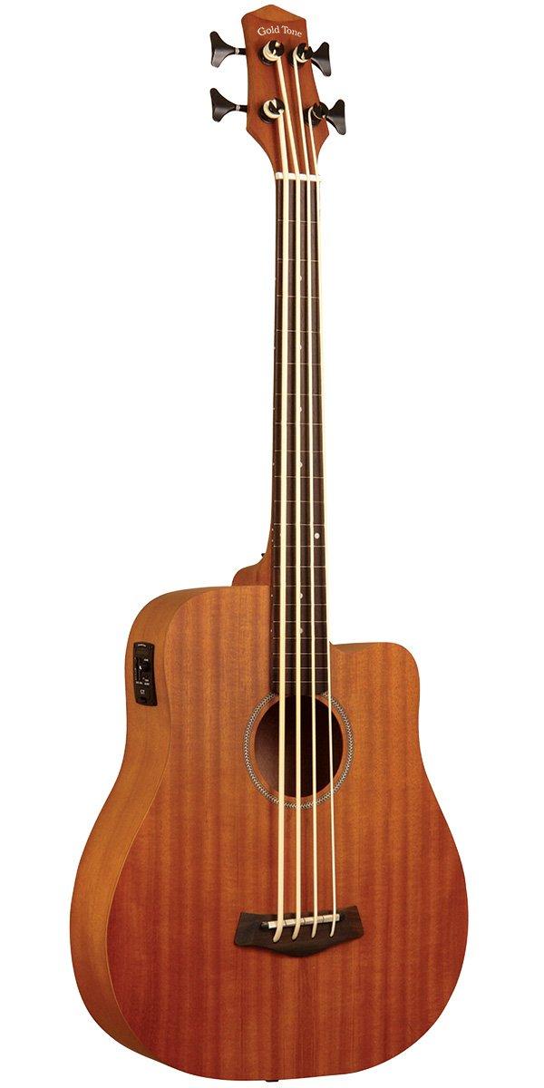 Micro Bass With Bag