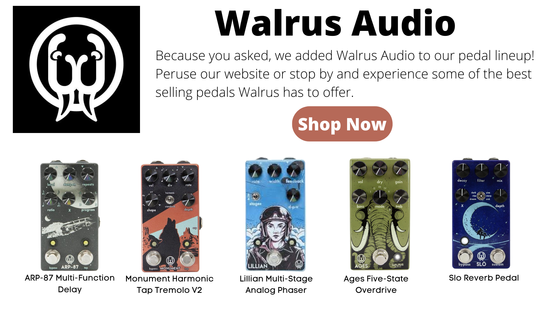 Walrus Audio Pedals. Slo, Ages, Lillian, Arp-87, Monument. Overdrive, delay, rebverb, phaser.