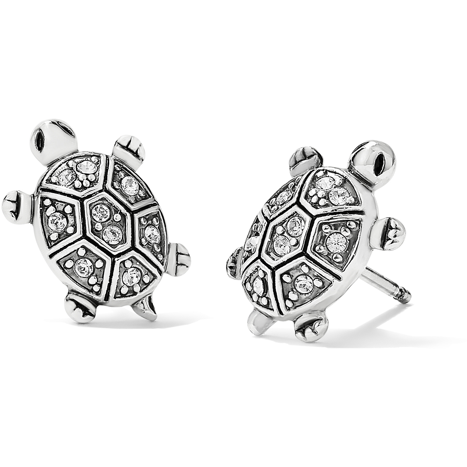 Fortune Turtles Mini Post Earring from Brighton