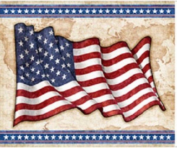 All American American Flag Panel