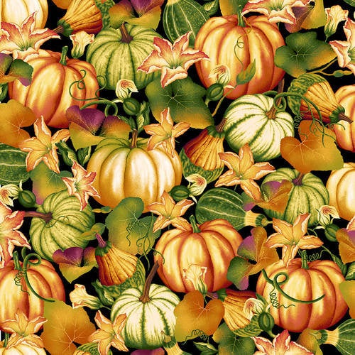 Henry Glass Autumn Time by Color Principles - Pumpkin Patch 2322-99 Black