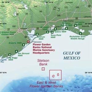 Flower Gardens National Marine Sanctuary 2020