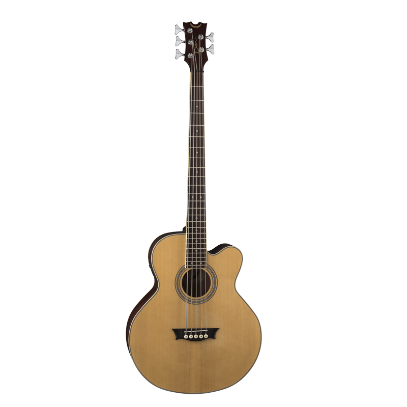 Acoustic/Electric 5 String Bass CAW SN