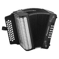 Panther Accordian, Diatonic, w/Gigbag