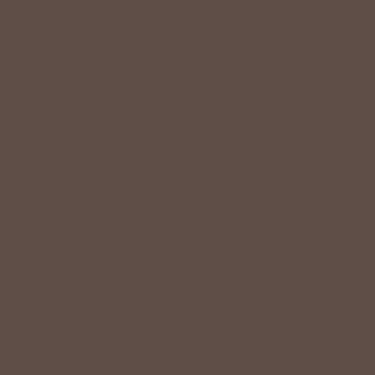 Country Chic Paint- All in One: Chocolate Tart 16oz Paint