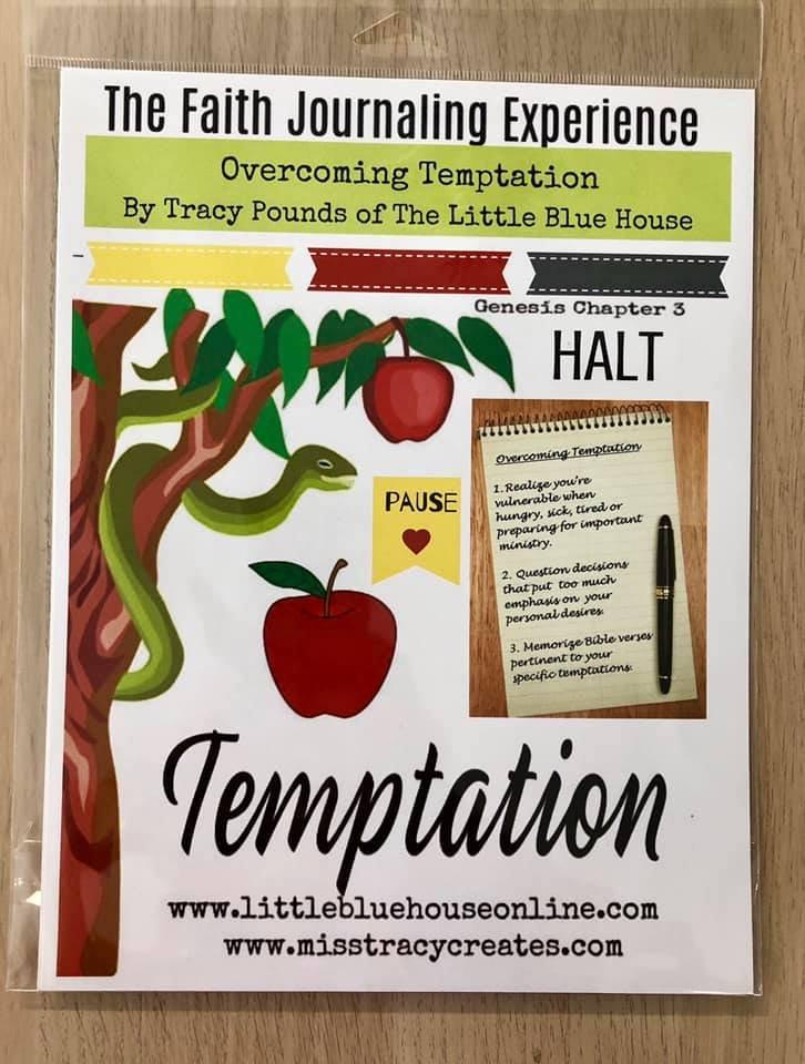 FJE Temptation Journaling Kit