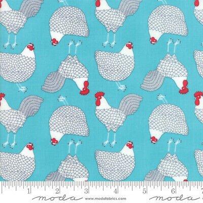Farm Fresh - 48262-20 Aqua Chickens