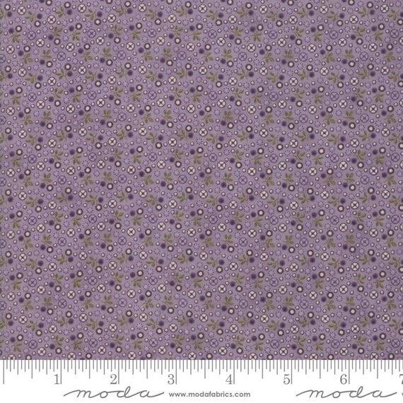 Sweet Violet - 2224 14