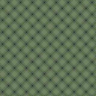 Liberty Star - 1587 11