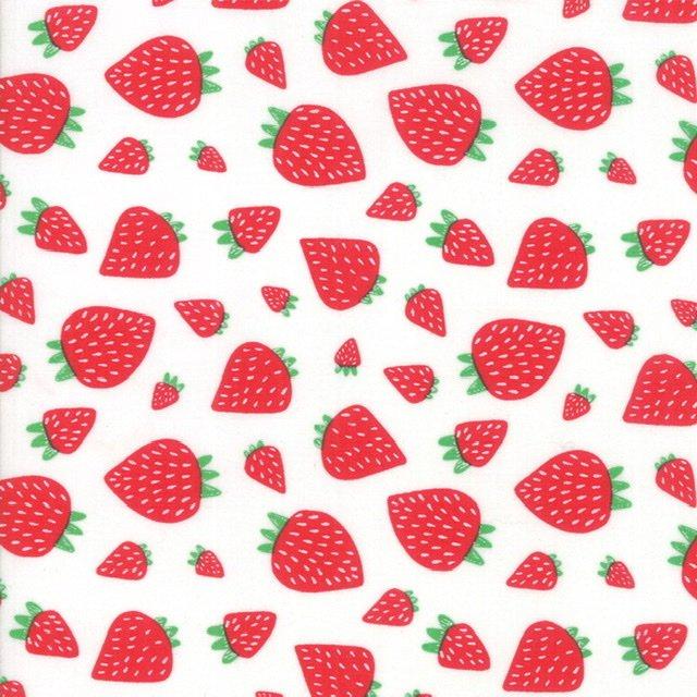 Farm Fresh - 48263-11 White Strawberries