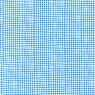 Doggie Play Day Gingham - Blue