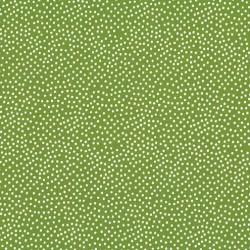 Garden Pindot - 1065 Avoc