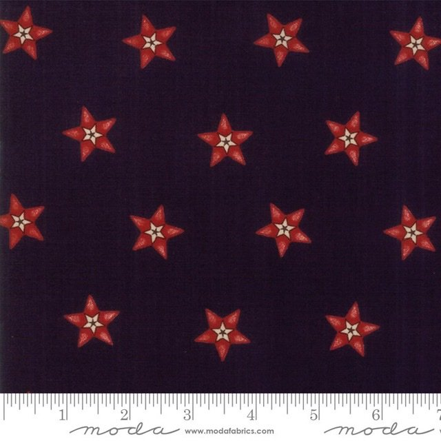 Star Stripe Gatherings - 1260-16 Navy