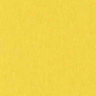 Essex Yarn Dyed - Curry 1677