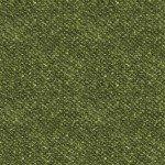 Woolies - 18507 G Green
