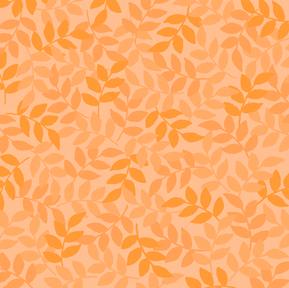 Harmony - O Apricot