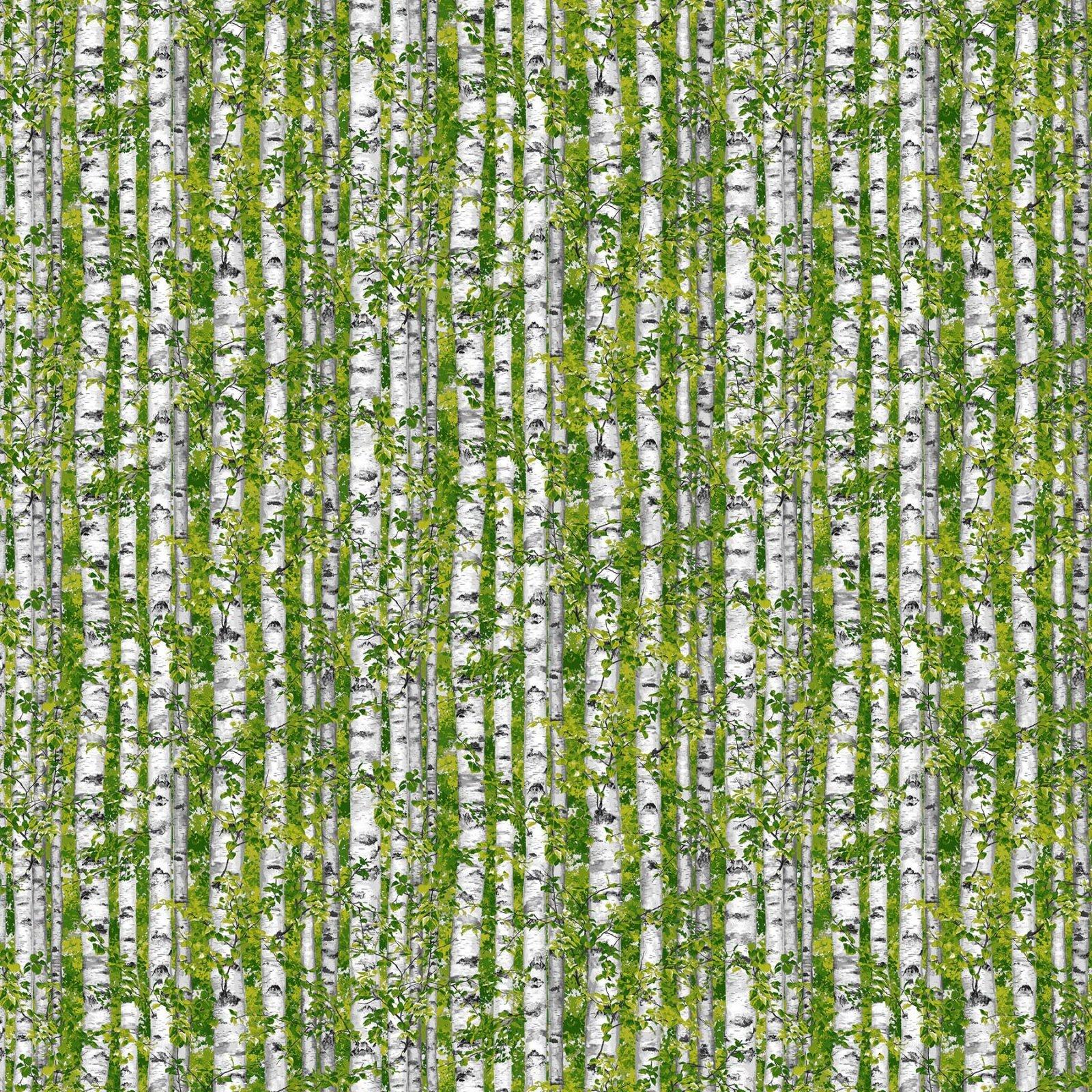 TREES(E-4), 21844-74, NORTHCOTT