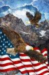 39436-42 Eagles, Digital Print 28 Panel, Stonehenge Stars and Stripes 7, Northcott
