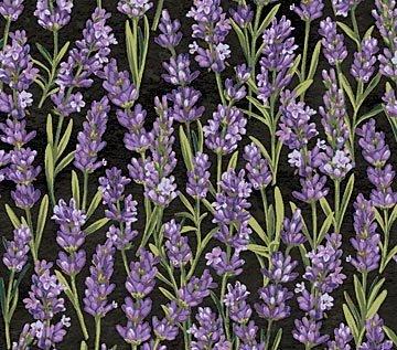 Lavender Market 2
