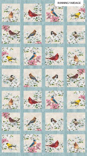 Joy of Spring Birds