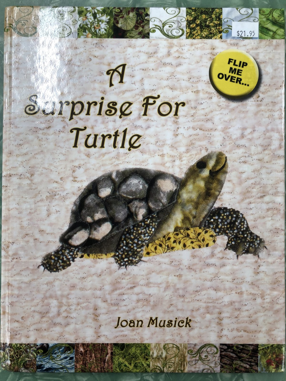 Surprise for Turtle, A