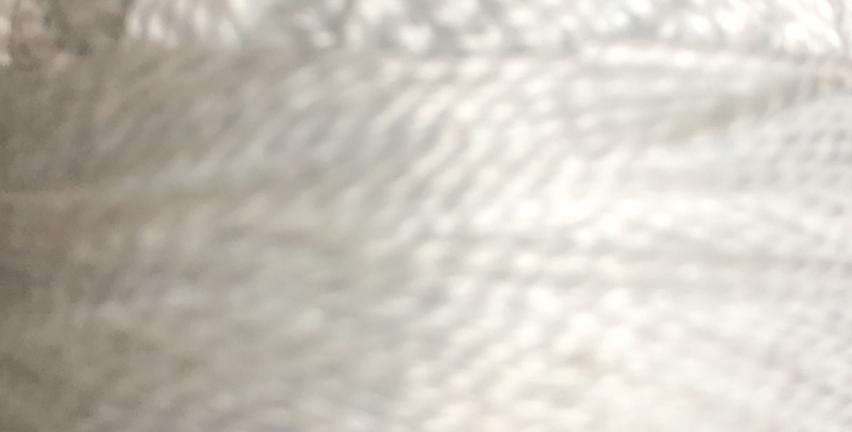 Finca Perle Cotton Sz 5 2-ply 10gm Blanco/White