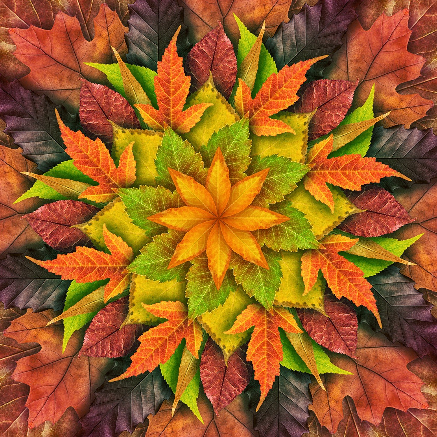 Autumn Dream Big Leaf Digital Panel 43in x 43in