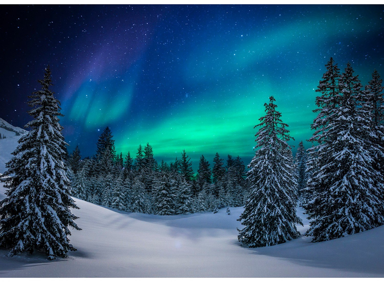 Call of the Wild Aurora  32 Panel