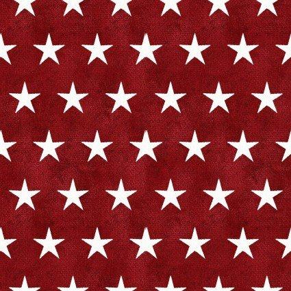 AMSP Stars on Red Dr