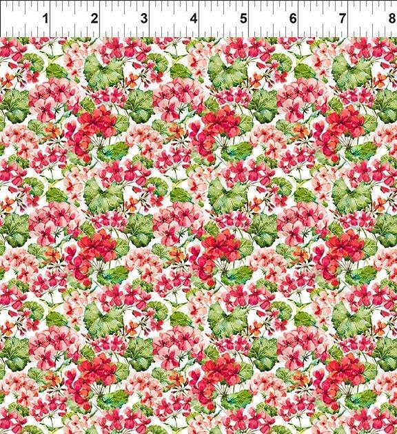 Watercolor Beauty Geranium Red
