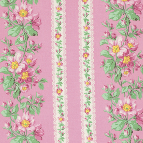 Snapshot Blooming Border Stripe