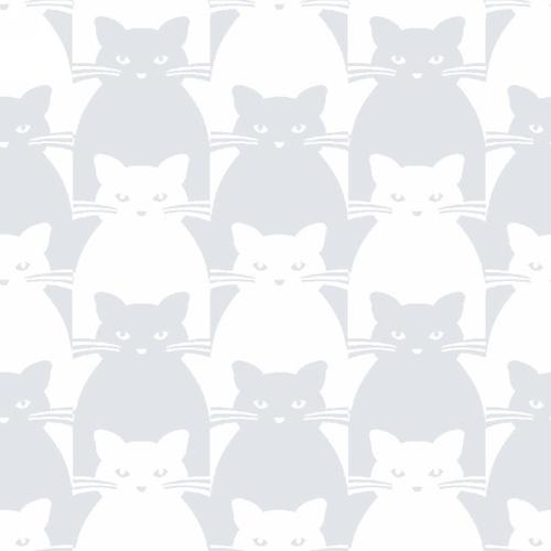 Kitty Kitty Gray Cat