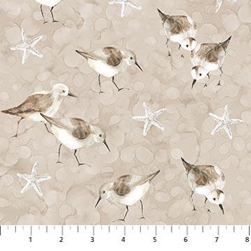 White Sands Birds