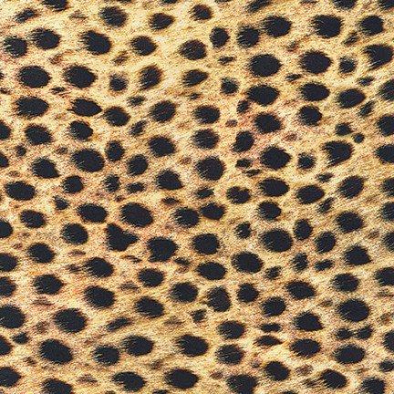 Wild Cheetah Lawn