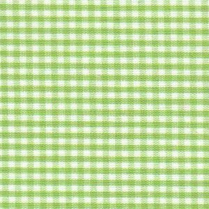 Sprout Green Gingham Fabric 1/16